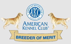 Florida's only Golden Breeder of Merit